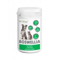 Boswellia 120 tbl.