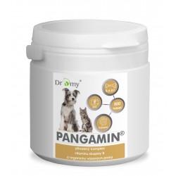 PANGAMIN® 800 tbl.