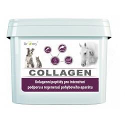 Collagen 900g